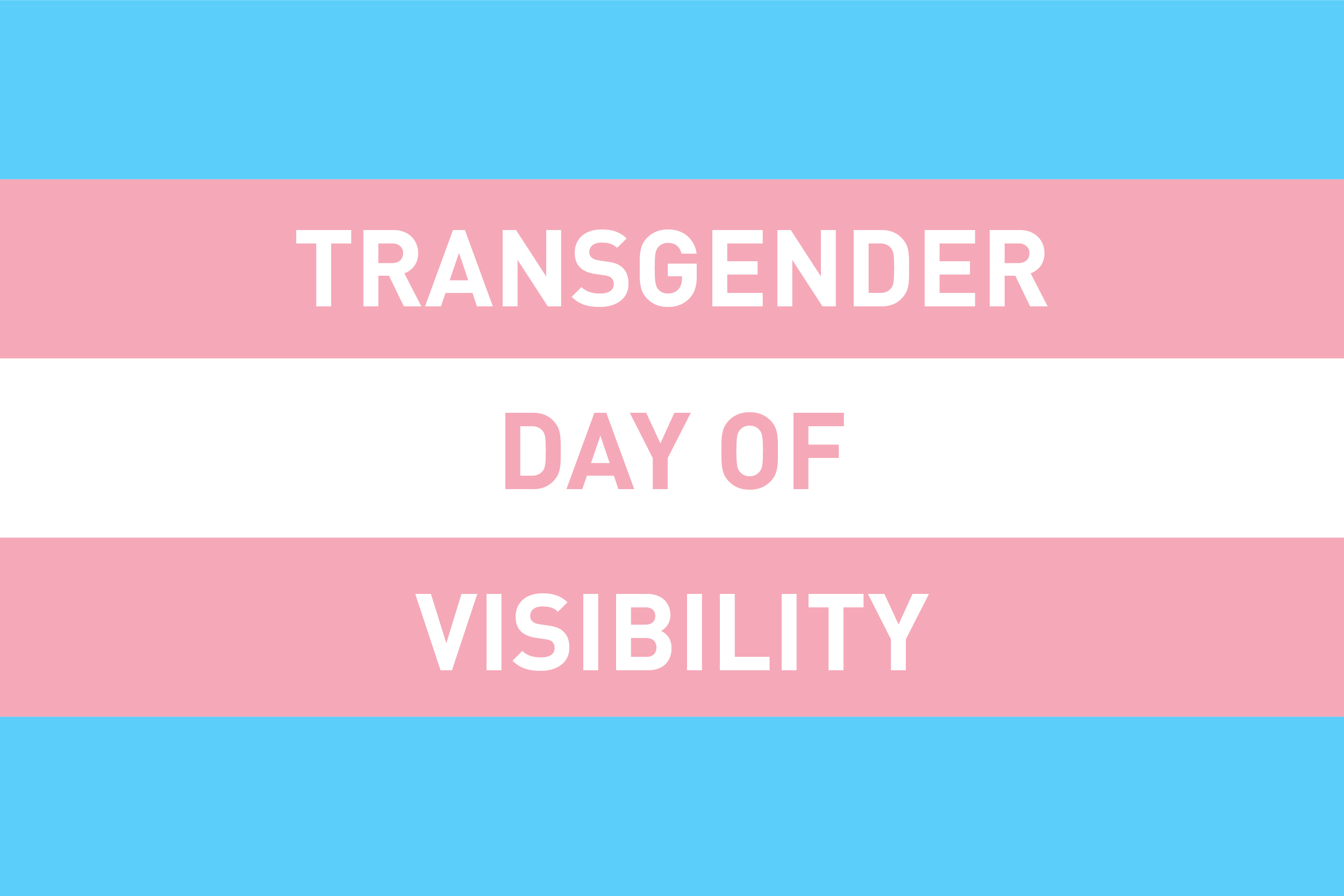 Transgender Day of Visability Image - Flag Colours